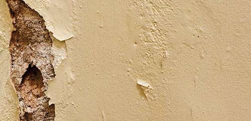 Traitement de l'humidité des murs à Toulouse